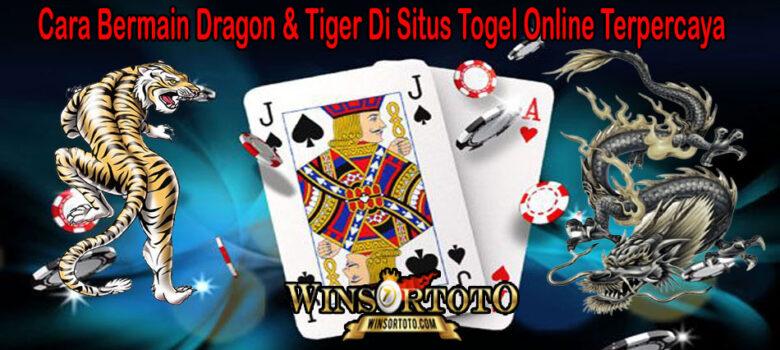 Cara Bermain Dragon & Tiger Di Situs Togel Online Terpercaya
