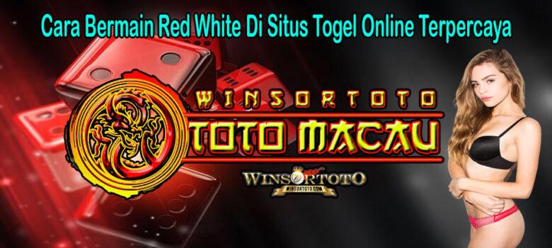 Cara Bermain Red White Di Situs Togel Online Terpercaya